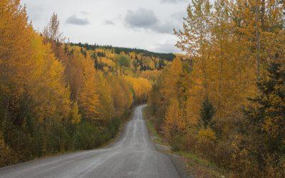 ALASKA – D'Anchorage à Haines (1ère partie)
