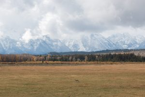 WYOMING – Let's see the Grand Teton National Park.