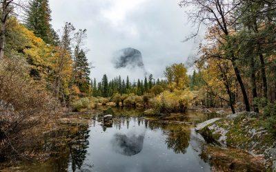CALIFORNIE – De Sequoia National Park à Yosemite National Park