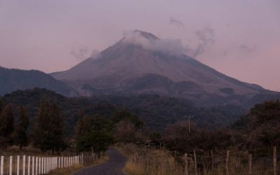 MEXICO – Tikal has a walk between Colima and Paracho