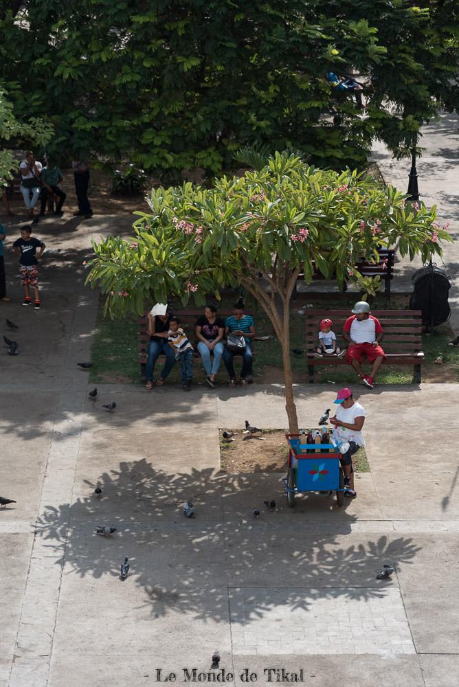nicaragua león arbre place tree vendeuse seller