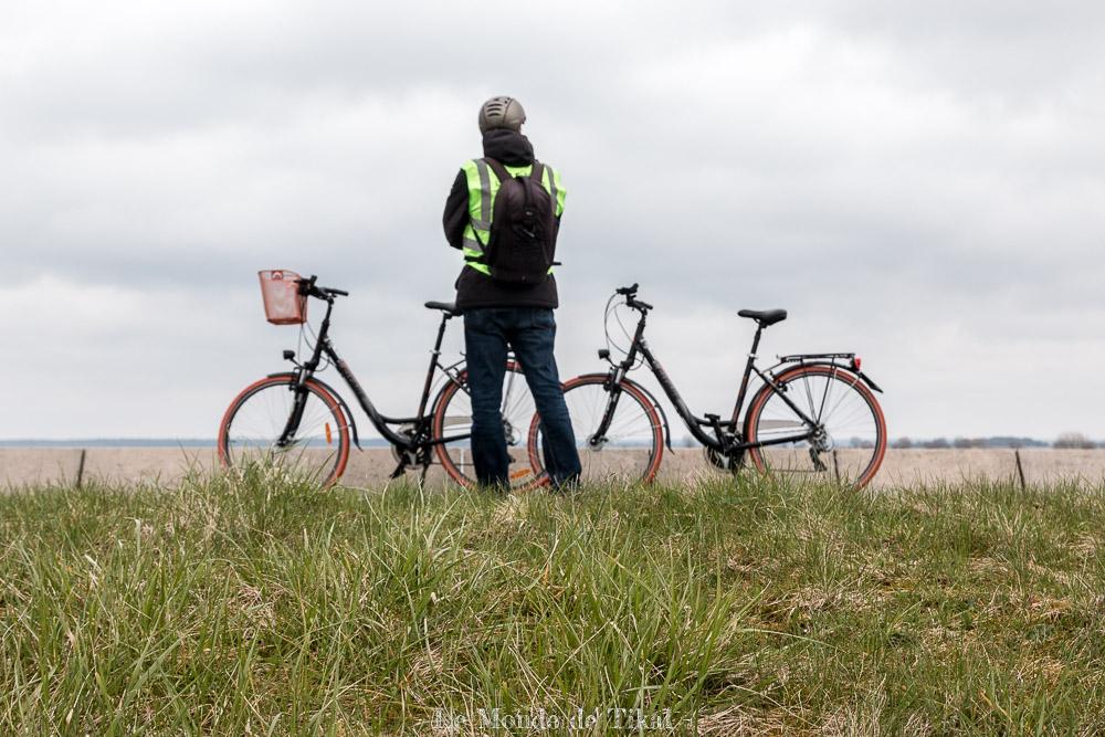 Tour du Lac du Der en vélo