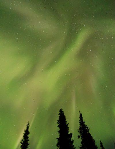 Aurore - Alaska
