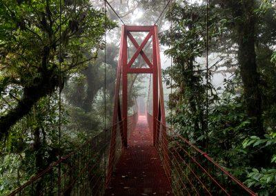 Entre deux mondes - Costa Rica Monte Verde